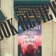 Book Review – The Year I met you