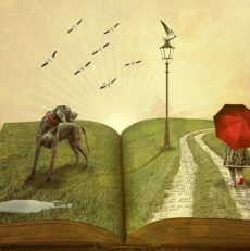 5 Best English Books for Beginners – Intermediate